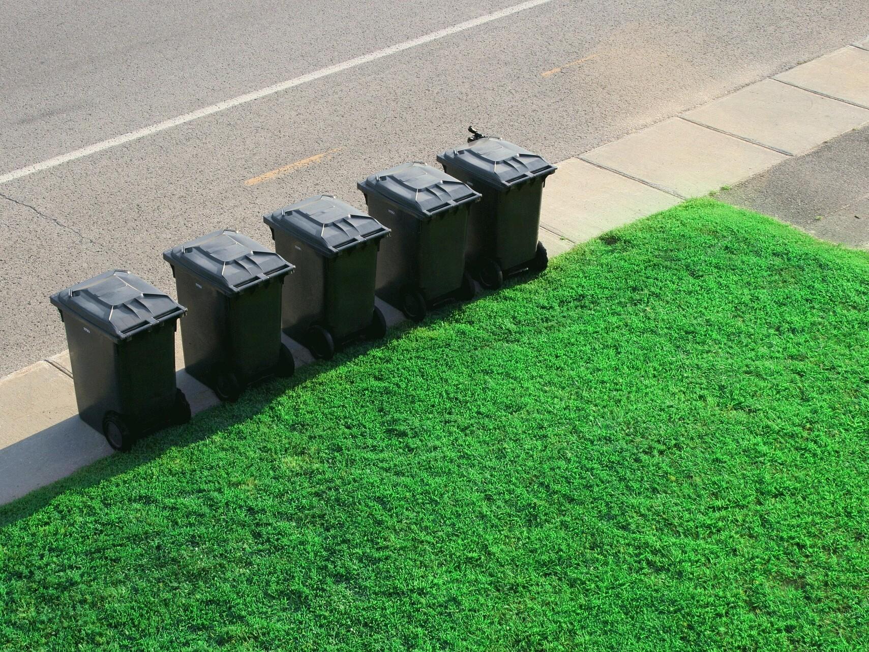 Fünf schwarze Mülltonnen stehen an der Straße vor einer grünen Hecke.