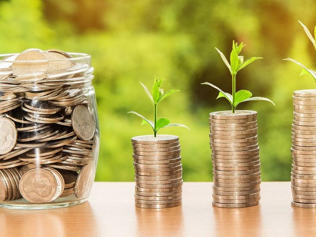 Topf mit Münzen, daneben mehrere Stapel Münzen aus denen einen Pflanze wächst.